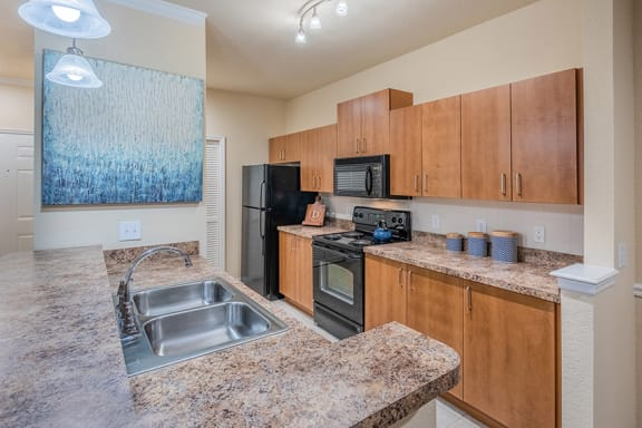 Delano at Cypress Creek - black GE appliances with microwave