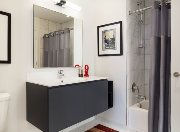 Luxury Apartments with Spa Baths 805 N. Lasalle Drive, Chicago IL
