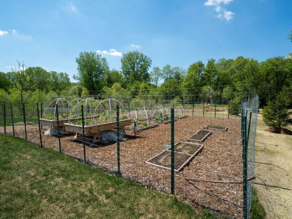 Healthy Living in Blaine, MN. with Community Garden Studio, 1, 2 and 3 Bedroom Apartments with Fitness and Cardio Center-Berkshire Central Apartments