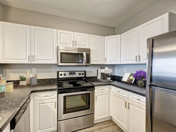 Newly  Renovated One and Two Bedroom Apartments  with Chef's Kitchen and Stainless Appliances