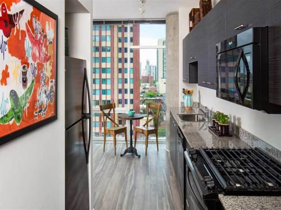 805 N. Lasalle Drive, Chicago, IL.  60610, Studio Apartments with Chicago City Views