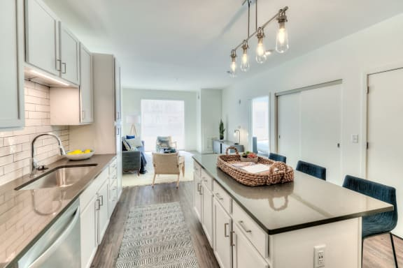 One Bedroom Apartments near Metra with Plank Flooring-1555 Ellinwood Avenue, Des Plaines, Illinois, 60016