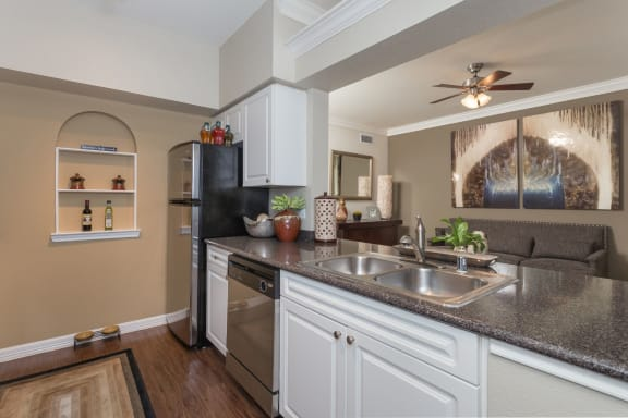 Fully Furnished Kitchen With Stainless Steel Appliances at The Plaza Museum District, Texas