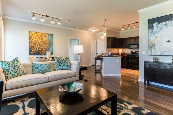Trendy Living Room at Estates at Briggs Ranch, Texas
