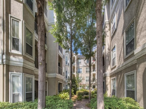 Exterior-Courtyard at Providence Uptown, Houston, TX, 77056