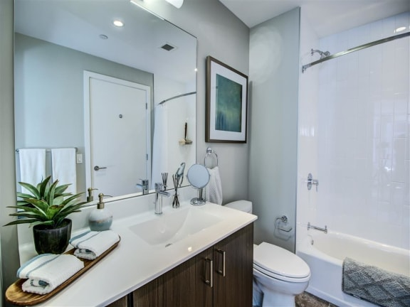 Spa Inspired Bathroom at Via Seaport Residences, Massachusetts