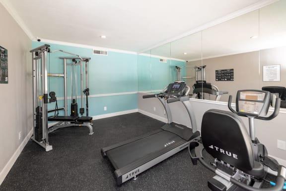 Fitness Center at Autumn Park Apartments TX