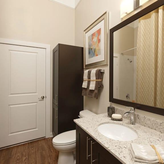 Mirror In Bathroom at Liberty Mill, Maryland