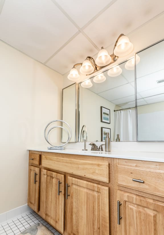 Newly renovated bathrooms at Ivy Hall Apartments in Towson MD