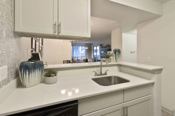 Stainless Steel Sink at Alvista Trailside Apartments, Englewood, 80110