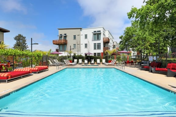 Pool with lounge chairs Santa Rosa CA Apartments For Rent Annadel