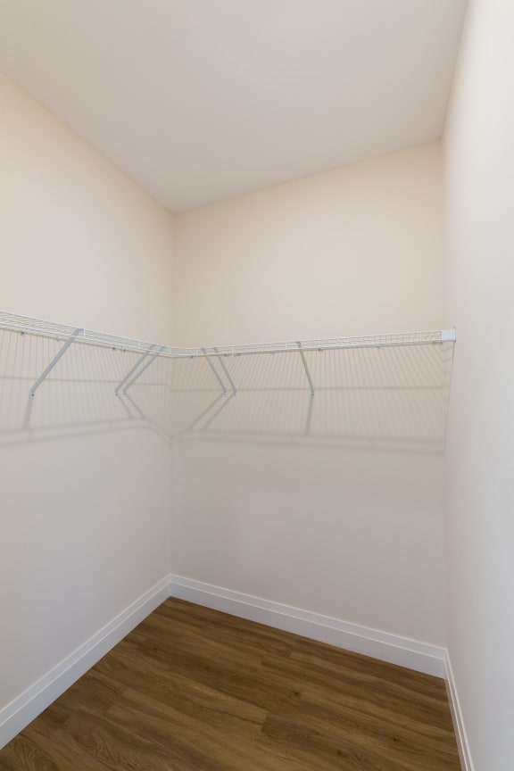 Large Closets at 28 Austin, Newton, 02460