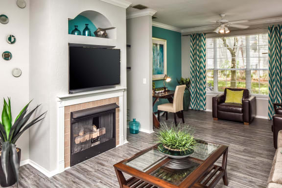Gas Fireplace Grand Reserve at Tampa Palms Tampa FL 33647