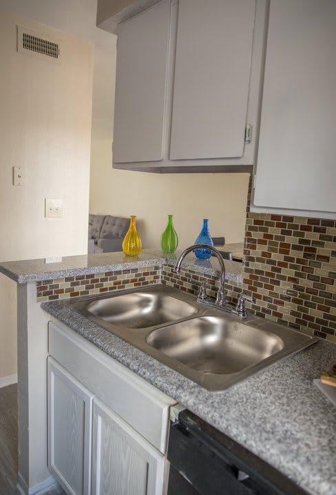 Disposal Dishwasher at The Alara, Houston, Texas
