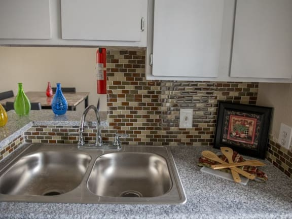 Stainless Steel Sink With Faucet In Kitchen at The Alara, Houston