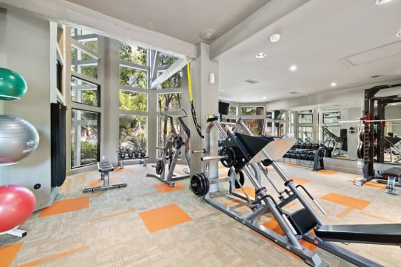 state of the art fitness center in webster apartments
