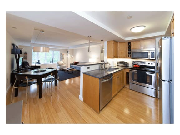 Maple Kitchen Cabinetry with Striking Limestone and Quartz Countertops at Marion Square, Brookline, MA