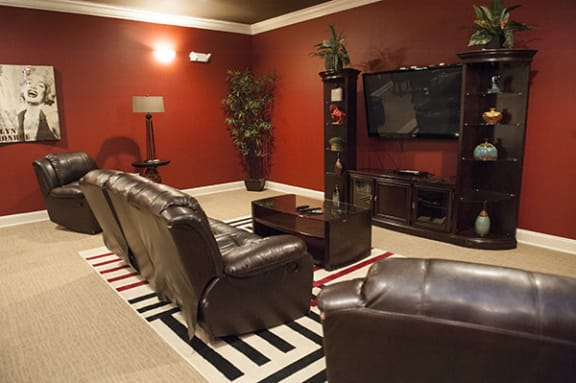 Movie Theater Room in Fayetteville, NC