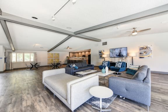 Clubhouse Sitting Area with Hardwood Inspired Floor, Gray Sofa, Rug and Ceiling Fan/Light