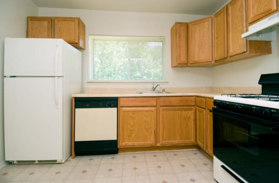 Electric Kitchen with Updated Appliances, 20705