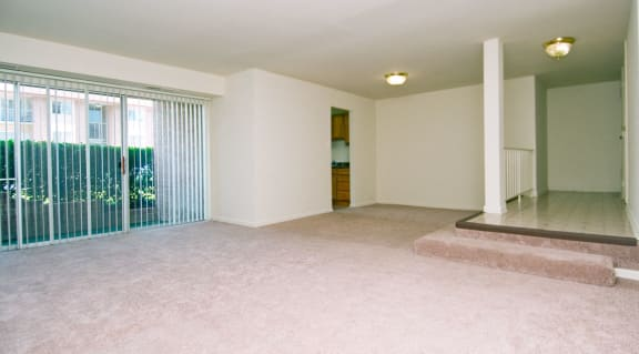 Plush Wall-to-Wall Carpeting at Townley, Beltsville, MD,20705