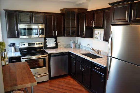 Stainless Steel Frigidaire Gallery Refrigerator at Somerset Place Apartments, Chicago, 60640