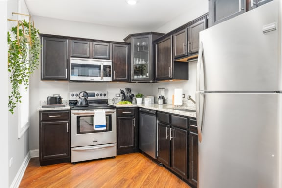Fully Furnished Kitchen With Stainless Steel Appliances at Somerset Place Apartments, Chicago, 60640