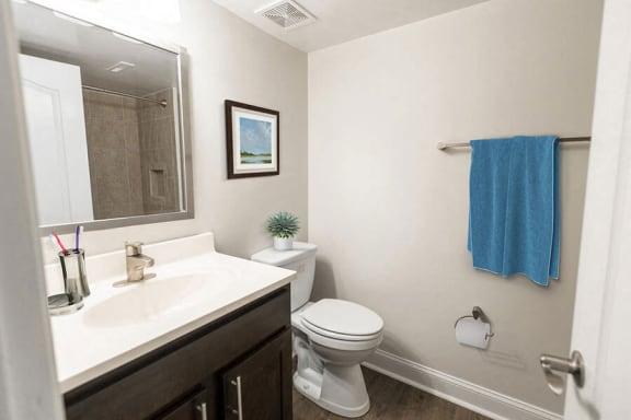 Bathroom at Padonia Village Apartments