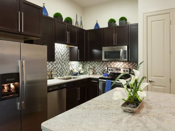 Granite Kitchen Countertops At Domain by Windsor,1755 Crescent Plaza, Houston, 77077 Granite Kitchen Countertops and Stainless Steel Appliances