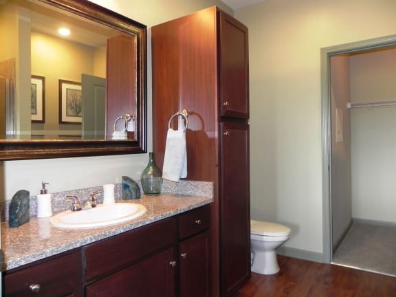 Bathroom at LangTree Lake Norman Apartments, Mooresville, NC, 28117