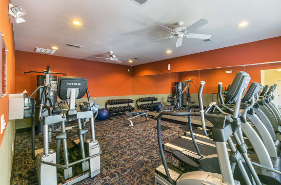 24 Hour Fitness Center with Free Weights at Aventura at Forest Park, St. Louis, MO 63110