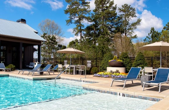 Walton Bluegrass Swimming Pool, Alpharetta GA