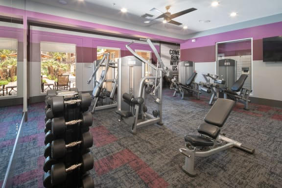 Free Weights and Fully Equipped Gym at Sage Stone Apartments 85308