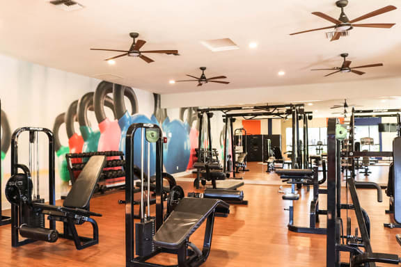 Gym with Exercise Cardio Machines at Phoenix Apartments to Rent