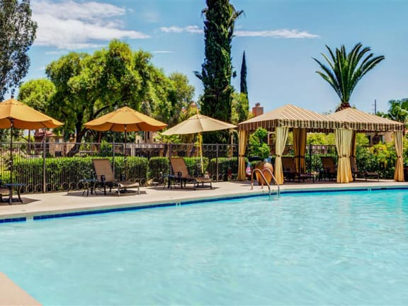 Luxury Apartments Tucson with Crystal Clear Swimming Pool
