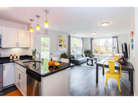 Premier Kitchens with Stainless Steel Appliances at Linea Cambridge in Cambridge, MA 02140