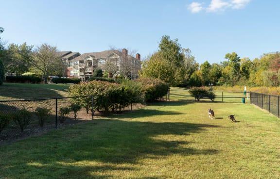 Pet-Park at Wyndchase at Aspen Grove, Franklin, TN, 37067