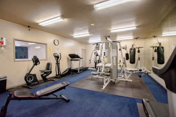 Fitness Center With Updated Equipment at Walnut Creek Apartments, Kokomo