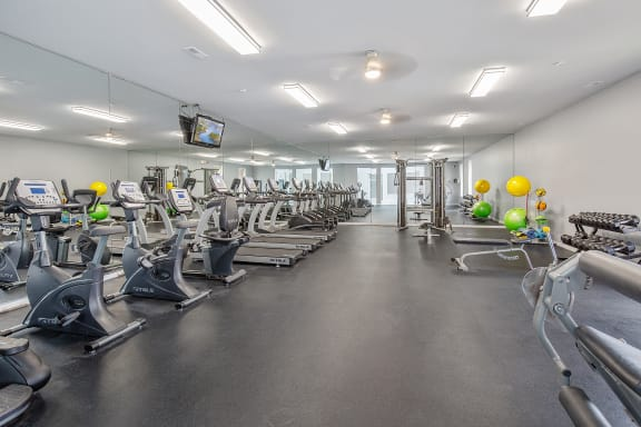 Cardio and Weights Fitness Center at Lakeside Village Apartments, Clinton Township 48038