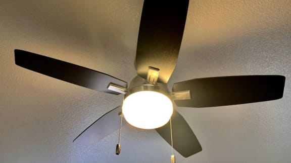 La reserve view of new ceiling fans with nice lighting