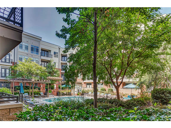 Amazing Pool with Jacuzzi at 712 Tucker, Raleigh, NC, 27603