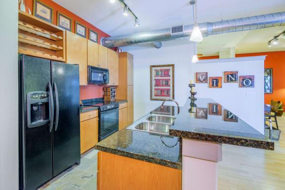 Lofts at Lakeview Apartments - Black-on-black appliances