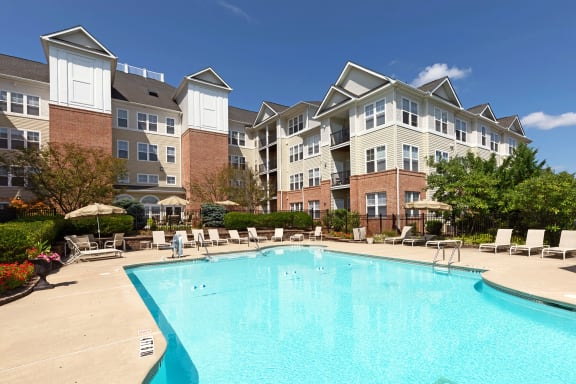 Avenel at Montgomery Square - Resort-style swimming pool