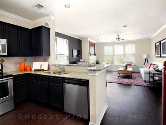 Granite Countertops in Landing at Round Rock apartments in Round Rock 7711 O Conner Road