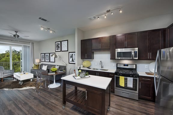 Stainless Steel Appliance Package with Gas Stove at Morningside Atlanta by Windsor, Atlanta, 30324