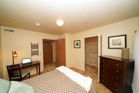 Walk-in Closets With Organizers at Foxwood Apartments in Portage, MI