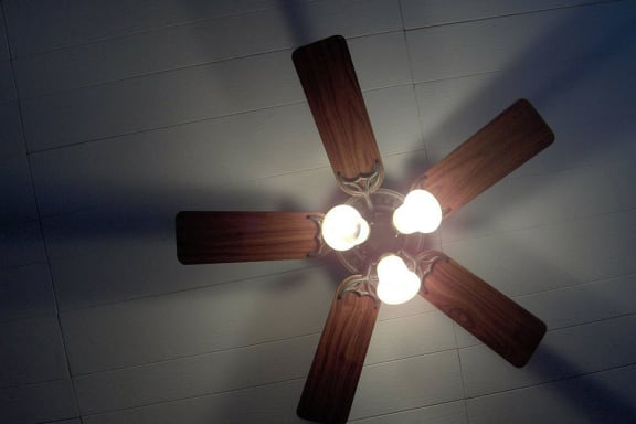 Ceiling-Fan at Creekside Square, Indianapolis, IN