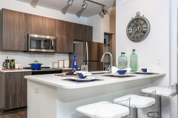 Gourmet Kitchen With Island at Oasis at Shingle Creek, Kissimmee, 34746