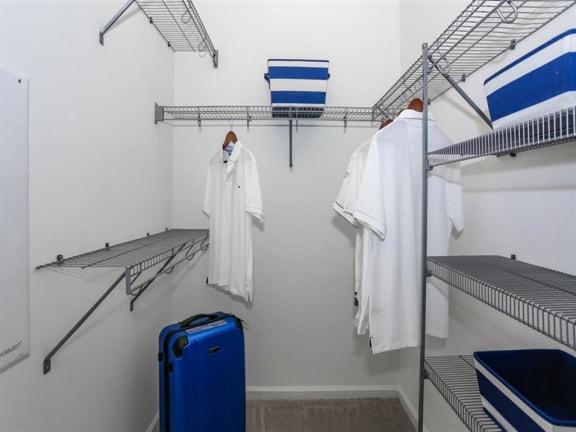 Walk In Closet at Oasis at Shingle Creek, Kissimmee, FL, 34746