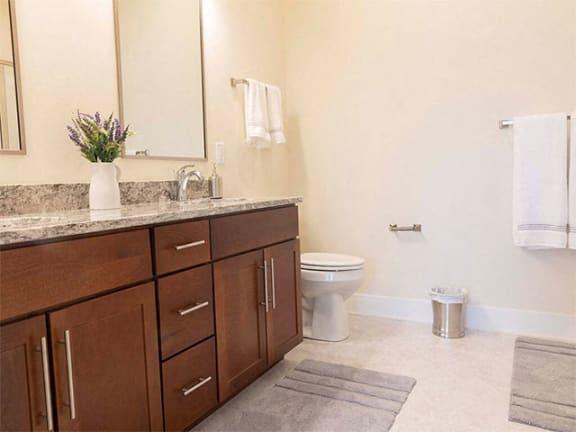 Designer Counter-Top In Wash Room at Cedar Place Apartments, Cedarburg, WI